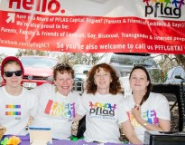 FAIRDAY-2014-pFlag