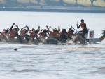 Diamond Phoenix Dragon Boat Club : Canberra ACT